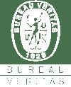 bureau-veritas-logo-white