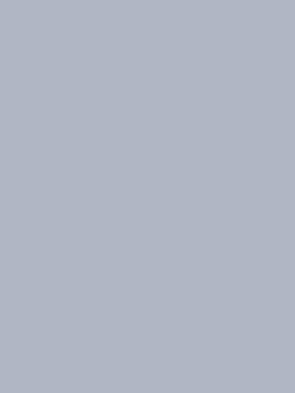 US Army uses Dustless Blasting